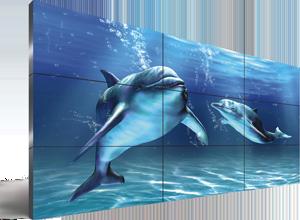 Monitor LFD Image Title LG e Samsung